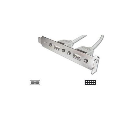Digitus záslepka slotu s 2 USB porty + kabel 2x5pin 0,25m